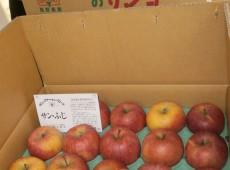サンファームのりんご