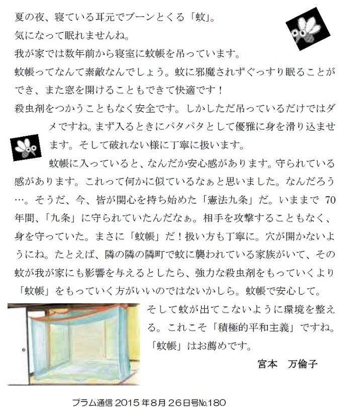 今月の筆者は、スタッフ宮本万倫子さんです。