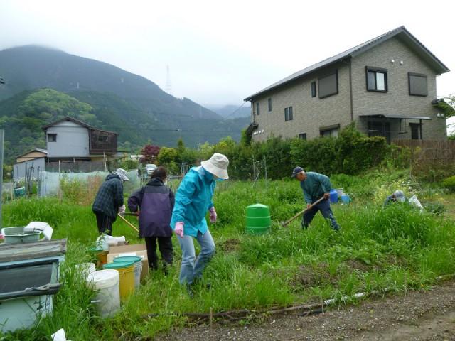 静岡市郊外の畑