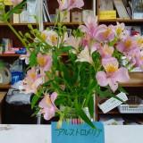 スタッフの心配りの花